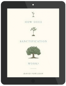 Book Summary of How Does Sanctification Work by David Powlison