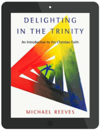 Book Summary of Delighting in the Trinity by Michael Reeves