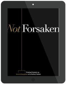 Book Summary of Not Forsaken by Louie Giglio