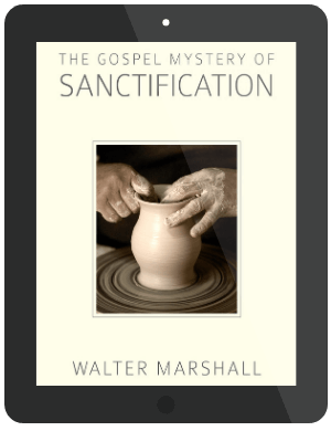 Book Summary of The Gospel Mystery of Sanctification by Walter Marshall