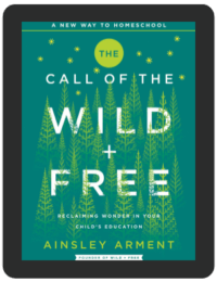 Book Summary of The Call of the Wild + Free by Ainsley Arment
